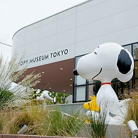 Vé Bảo Tàng Chú Chó Snoopy Tokyo, Nhật Bản