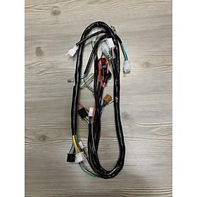 Dây điện sườn dành cho xe máy Honda Citi