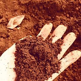 Đất đỏ bazan dùng trồng rau , dâu tây , cây kiểng ( đất nhiều dinh dưỡng , giữ nước tốt )