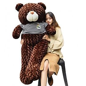 Gấu bông teddy cao cấp khổ vải 1m6 cao 1m4
