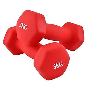 Bộ 2 tạ tay cao cấp tập Gym BG 3kg (hàng nhập khẩu)