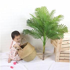 Cây dừa kiểng giả cao 1 mét