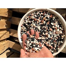 5 kilogam đá trang trí cây trồng - chậu nuôi cá SS3