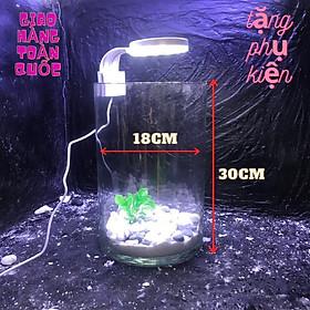 Bể cá mini để bàn kèm phụ kiện tiểu cảnh có hồ lọc đèn