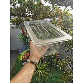 Khay GN mika 1/4×100 đựng topping đựng kem TẶNG 1 Rổ nhựa hình TIM