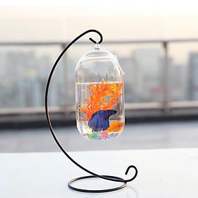 Bể cá mini C33 hình bán nguyệt 15