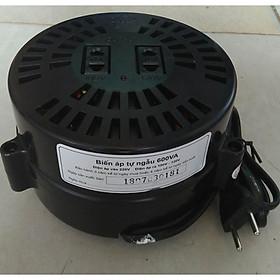 Bộ đổi nguồn 220v sang 100v - 120v lioa 600va