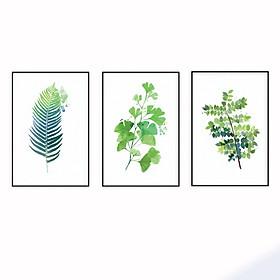 Hình đại diện sản phẩm Bộ 3 Tranh Canvas Nhiệt đới T009 (40x60)