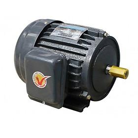 Motor vỏ gang JET chân đế Hồng Ký - JET 1.5KW 220V 1450v/p - Hàng chính hãng