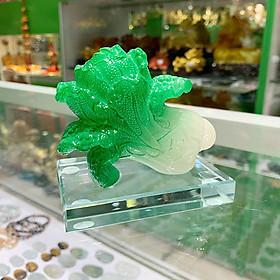 Bắp cải xanh nhỏ trên đế thủy tinh FC169A