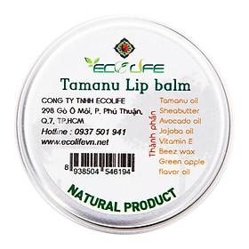 Son Dưỡng Môi Không Màu Cho Nam Ecolife - Lip Balm For Man (50g)