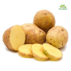 Khoai tây vàng VietGap 700gr