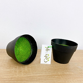 Combo 2 Chậu Nhựa Đen Nhồi Xốp Phủ Cỏ Xanh Dùng Trong Cắm Cây Hoa Giả
