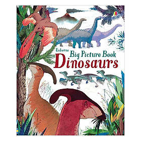 Usborne Big Picture Book Dinosaurs