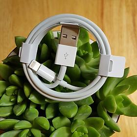 Dây cáp sạc dành cho iphone / ipad chuẩn ( Cổng USB to lightning)