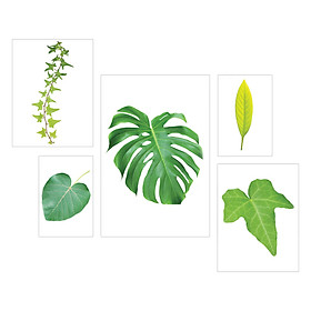 Tranh Treo Tường- Tropical Leaf S5T-1