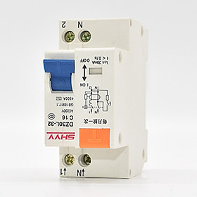 220V Single Phase Double Wire Leakage Protector DZ30LE Residual Current Device