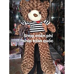 Gấu bông Tedy khổ 1m2 Bông gòn ảnh thật 100% (shop miễn ship)