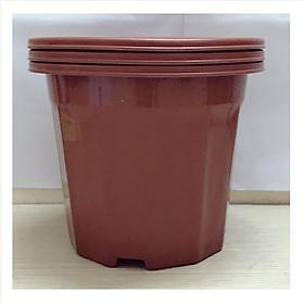 Hình ảnh 3 Chậu Nhựa Trồng Hoa, Cây Cảnh E230 CN