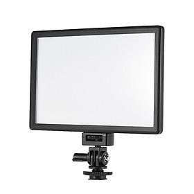 Đèn LED Viltrox L116T Hai Màu Điều Chỉnh Được Độ Sáng Dành Cho Máy Ảnh Canon Nikon Sony Panasonic DSLR Và Máy Ghi Hình (3300K-5600K) (987LM) (CRI95+)