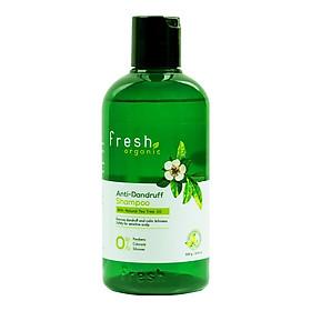 Bộ dầu gội và xả Tràm Trà trị gàu Fresh Organic Tea Tree Oil (Dầu gội 250g + Dầu xả 180g)-2