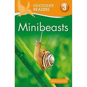 Kingfisher Readers Level 3: Minibeasts