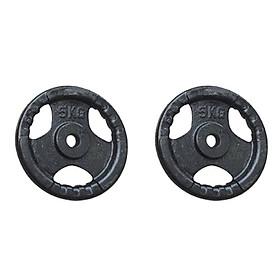Bộ 2 bánh tạ gang 5kg Đại Nam Sport (Tổng 10kg)