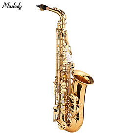 Muslady AS-482 E flat Alto Saxophone Eb Key Brass Gold Lacquer with Hard Case Cleaning Brush Cleaning Cloth 1 Pair