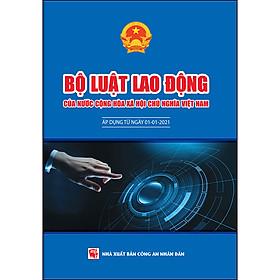 Bộ Luật Lao Động Của Nước Cộng Hòa Xã Hội Chủ Nghĩa Việt Nam (Áp Dụng Từ Ngày 01-01-2021)