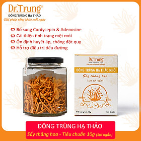 Đông trùng hạ thảo DR. TRUNG (Sợi Khô - Sấy thăng hoa) Hũ 10 Gram - Loại TIÊU CHUẨN - (Cordycepin & Adenosine cao giúp tăng đề kháng mạnh, ngủ ngon, giảm mệt mỏi)