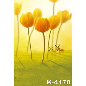 Phông 3D chụp ảnh 2x3m mã K-4170