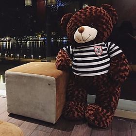 GẤU BÔNG Teddy ICHIGO khổ vải 1m