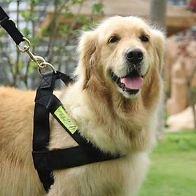 (Bộ) Dây dắt chó police phản quang - dây dắt kèm yếm đai yên ngựa cho chó cảnh sát gồm dây dắt và đai yếm Màu ngẫu nhiên