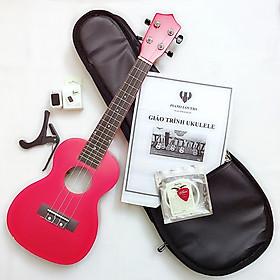 Combo khuyến mãi đặc biệt khi mua đàn Ukulele Concert Woim 33A19 cao cấp - Mua 1 tặng 7