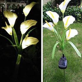 Solar-Powered 5 LEDs Pin Lamp Simulate Calla Lily Night Light Yard Garden Decoration