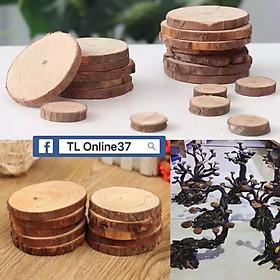 Lát gỗ Lũa gắn rêu - Trang trí bể thuỷ sinh