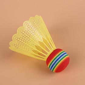 Ống cầu lông nhựa 8 quả (Nhiều màu)