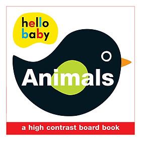 Animals: Wipe Clean Activity Flashcards - Wipe Clean Activity Flashcards (Board book)
