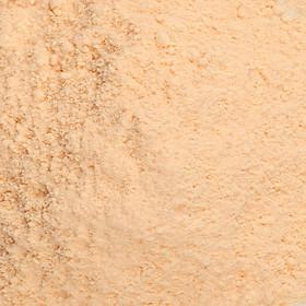 Phấn phủ hút dầu Inglot Face Translucent Loose Powder (1.5g)-1