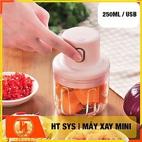 Máy xay  mini HT SYS - Sạc Điện -  Máy Xay Hành, Tỏi, Rau Củ ,Thịt Dung Tích 250ml - 3 Lưỡi dao - Hàng Nhập Khẩu
