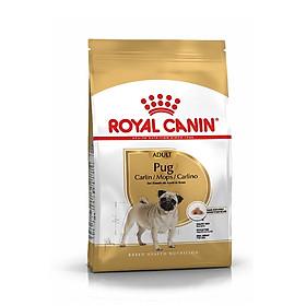 Thức ăn cho chó Royal Canin Pug Adult 500g