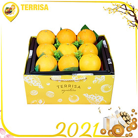 Hộp quà Tết TERRISA Signature Đoàn Viên 3 (Hộp 2.5 Kg - Cam Mỹ)