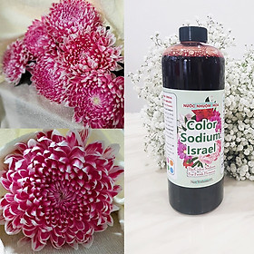Nước Màu Nhuộm Hoa Tươi (Chai 1 Lít) Công Nghệ Israel giúp đổi màu hoa cắt cành thành 10 màu tại Chợ Hoa, Shop hoa và tại nhà