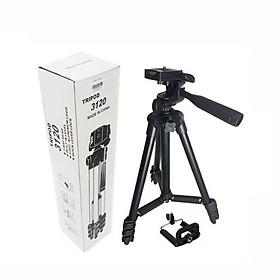 Chân máy ảnh, gậy chụp hình TRIPOD TF 3120A