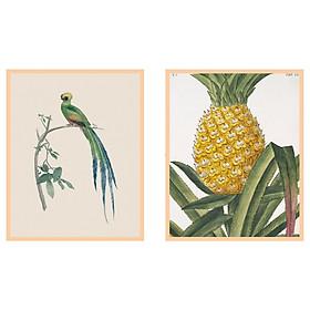 IKEA FAGERÖN Khung với poster nhiệt đới 40x50 cm Frame with poster Tropical 40x50 cm