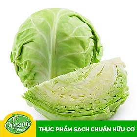 Bắp cải trắng hữu cơ Organicfood - 1kg