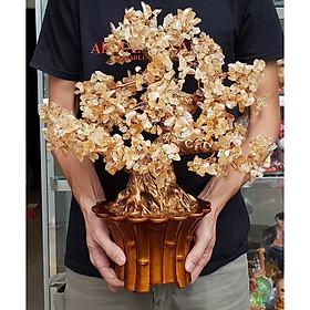 Cây Tài Lộc bằng đá Thạch Anh tự nhiên size 45cm mã VANG-DA032