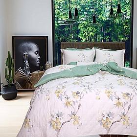 Bộ chăn ga gối drap giường cotton satin Hàn Quốc Julia 402 -  5 món có Chăn