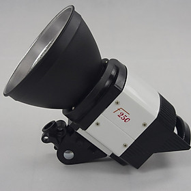 Đèn Flash Studio OMD F250 - Hàng nhập khẩu