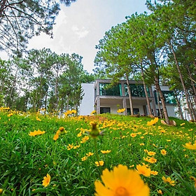 Terracotta Hotel & Resort 4* Đà Lạt - Gói 3N2Đ Buffet Sáng, Bữa Tối, Hồ Bơi, Xe Đưa Đón - Highland Escape